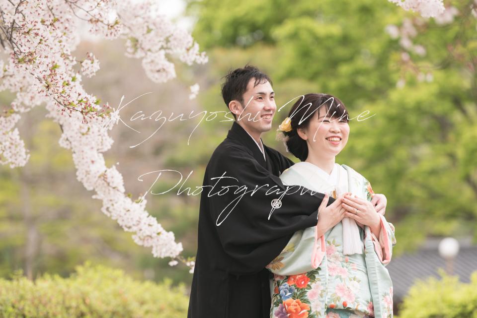 住吉公園奈良公園前撮り家族写真桜ロケーション出張撮影
