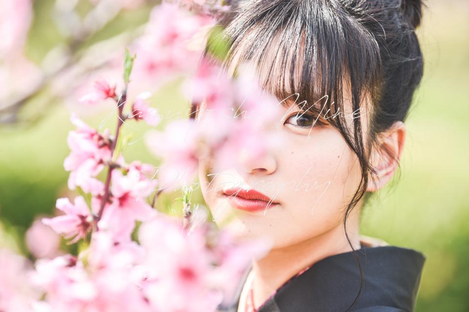 大阪城桜ノ宮成人式振り袖前撮り桜ロケーション出張撮影カメラマン