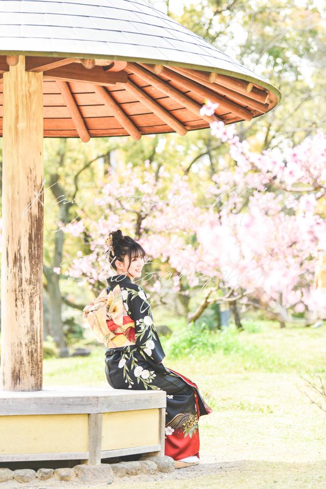 大阪城桜ノ宮成人式振り袖前撮り桜ロケ出張撮影カメラマン